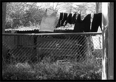 Rural Washing & Drying Day (fotograf1v2) Tags: bw australia victoria laundry clothesline washing corrugatediron gippsland drygrass dryingclothes wiremeshfence summerdry farmsheds mudbrickhut shirewest grasscora lynncardinia
