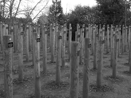The National Memorial Arboretum - Shot at Dawn stakes