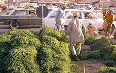 Film 13 1980 Doha Souk, Oasis, Port  10 (Phytophot) Tags: old souk 1978 doha qatar alfalfa