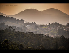 Early morning at ooty. (HareshKannan) Tags: morning mist mountain green landscape early nikon hill hills evergreen ooty 55200mm d3100