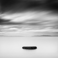 Solid (Ron Rothbart) Tags: california longexposure blackandwhite bw water monochrome waterfront nd albany sanfranciscobay neutraldensityfilter albanybeach flemingpoint 10stopfilter