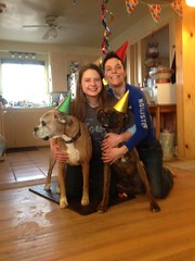 Family photo (miia hebert) Tags: ferguson dogportrait dogbirthdayparty uploaded:by=flickrmobile flickriosapp:filter=nofilter ferguson1year fergusonsbirthday
