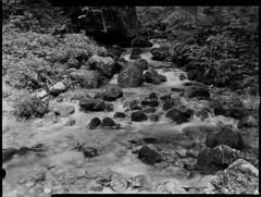 Flow (_landes) Tags: linhoftechnikaiv largeformat landscape film analog bw schneiderkreuznach 90mm56superangulonschneider knigssee