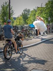 Small leap forward (farflungistan) Tags: canon7d summer2016 9straatjes 9streets amsterdam holland jordaan nederland netherlands streetphotography