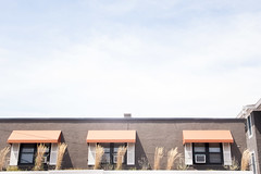 (gwoolston) Tags: stoneharbor jerseyshore architecture windows seashore plants orange black