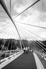 (fernando_gm) Tags: blackandwhite bw blancoynegro bridge puente bilbao bilbo paisvasco espaa spain street callejera calle city ciudad fujifilm fuji xt1 1024mm people person persona gente wideangle granangular
