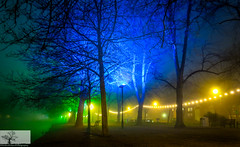 Foggy Embankment (Rob Felton) Tags: night fog mist thegreatouse theembankment embankment river bedford bedfordshire robertfelton felton lights reflection