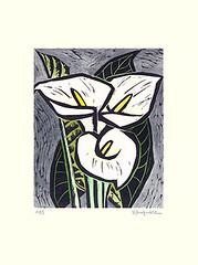 Calla-lily (Japanese Flower and Bird Art) Tags: flower callalily zantedeschia aethiopica araceae sachio suzuki modern woodblock print japan japanese art readercollection