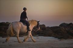 Cavalier (brume2mer) Tags: cheval mer coucher de soleil coucherdesoleil balade soir nocturne finistre keremma plouescat