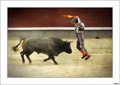 Tauromaquia II (V- strom) Tags: toros textura torero tradicin color luz espaa banderillas fiesta madrid