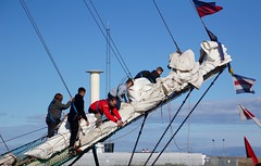 Tall Ships (2) (Jeanni) Tags: tallships blyth regatta 2016 sails rigging ships coast northsea