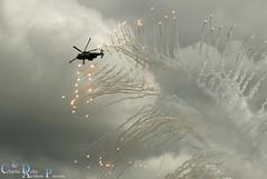 COMMANDO ASSAULT DEMO BRITISH ARMY (charlie delta airshow passion) Tags: yeovilton airshow sea vixen mig15 spitfire seafire commando assault stonehenge red arrows merlin black cats lynx rafale f16 falcon b17 team orlik