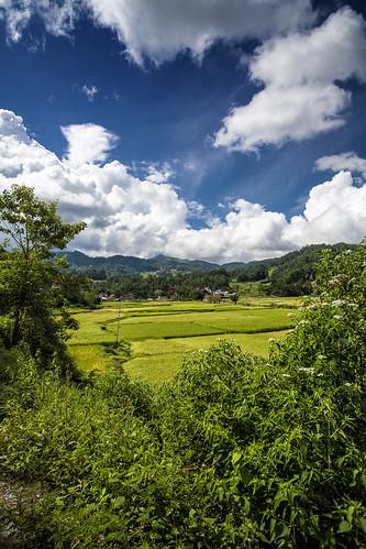 Toraja Area