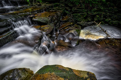 Space Between the Falls, 2016.08.26 (Aaron Glenn Campbell) Tags: rgsp rickettsglen statepark fairmounttownship luzernecounty nepa pennsylvania ganogaglen fallstrail water waterfall cascades longexposure nature outdoors optoutside meetthemoment macphun 2ev hdr aurorahdrpro sony a6000 a6k sonyalpha6000 ice 10stop neutraldensity filter rokinon 12mmf2edasifncs wideangle primelens manualfocus emount