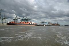 PSA Europa Terminal DST_7872 (larry_antwerp) Tags: port        belgium belgi          schip ship vessel        schelde        psaterminal psa europaterminal csavtoconao asmorgana eilbek validivia container