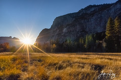 Sentinel Meadow and Sunstar (jeandayphotography.com) Tags: autumn ca california cliffs fall jeanday landscape sentinelmeadow sierra sierranevada usa valley yosemite yosemitenationalpark yosemitevalley color granite grass meadow mountains nps sun sunset sunstar trees wwwjeandayphotographycom