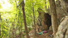 IMG_6889 (Taylor Treadgold) Tags: climbing bouldering nature tress