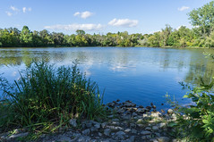 Summer Pond (The Bearded Deku) Tags: landscape nature pond summer bluewater bluesky peaceful quiet calming