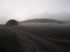 hummerich_in_morning_fog (Joerg Esper) Tags: kretz rheinlandpfalz deutschland de hummerich nebel fog dunst mist mountain berg natur nature landscape landschaft olympus pen olympuspenepl6 olympusmzuikodigitaled1442mm13556ezpancake feld felder field fields