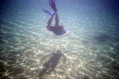 film (La fille renne) Tags: film analog 35mm lafillerenne lomography lomography400 lomolca krab underwater sea mediterranean roadtrip travel laciotat snorkeling diver