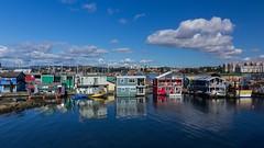 (marina~) Tags: victoria britishcolumbia canon westcoast canada marina boats houseboat