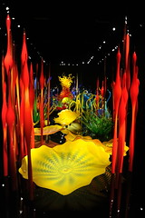 Fantasy glass garden, like a hallway of yellow, red orange, green and blue, polished black tile, Dale Chihuly's Glass and Garden, Seattle Center, Washington, USA (Wonderlane) Tags: usa yellow washington redorange seattlecenter greenandblue 6088 fantasyglassgarden dalechihulysglassandgarden polishedblacktile likeahallwayofyellow