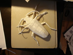 Root Borer v2.5 nearly finished (shuki.kato) Tags: bug paper insect origami beetle root titan kato borer shuki spined