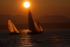 Shilshole Regatta Sunset (jfew) Tags: ocean seattle sunset mountains beach water silhouette sailboat bay boat marine sailing northwest pacificocean boating pacificnorthwest pugetsound elliottbay goldengardens shilshole goldengardenspark shilsholemarina canonef100400mmf4556lis