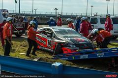 DIS-CTSCC-Race-2013217