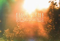(ani lynn) Tags: light plants sun sunlight nature dof christ god bokeh jesus depthoffield bible christianity jesuschrist bibleverse 1timothy fightthegoodfight