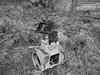 Hagenes 2012 #6 (A.Nilssen Photography) Tags: world old bw white black norway norge ruins fort wwii engine coastal ww2 war2 northern fortress festning rubble troms festung atlantikwall dyrøy atlantikwal hagenes dyroy dyroya