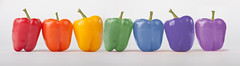 Rainbow Peppers (richardharrison34) Tags: blue red orange colour macro green yellow pepper rainbow purple violet canon450d