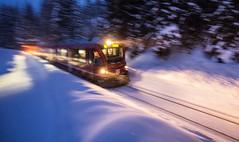 Rhtische Bahn, Arosa, Switzerland (Explore # 112 , 12.02.2013, Thank you flickr !) (ehutphoto) Tags: schnee trees winter light train schweiz abend licht afternoon eisenbahn wald arosa mitzieher dynamik rhtischebahn