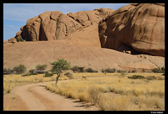A tree at the turn of the road (Dan Wiklund) Tags: road red summer mountain tree grass stone sand desert granite namibia d800 namibian spitzkoppe 2013