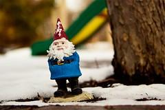 287/365 (meghan davidson) Tags: snow gnome neighborhood 365project