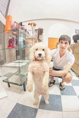Luli (Juanedc) Tags: dog pet argentina vertical standing ar tate fisheye perro hairsalon santarosa mascota luli lapampa parada perra peluqueria ojodepez lilianafigueroa juanjosedecristofaro