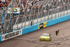 Carl Edwards Back Flip (62/365) (ToddMcKimmey) Tags: victory nascar checkered finishline startline pir backflip carledwards flagstand startfinishline checkeredflag project365 phoenixinternationalraceway frontstretch subwayfreshfit500
