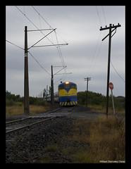 Como en los viejos tiempos (Fepasas en la Araucania) Tags: tren 666 cantera temuco 16000 terrasur