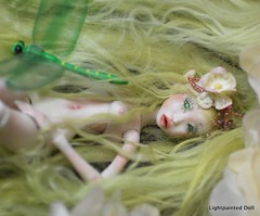 ld elf 11 (cureilona of Lightpainted Doll) Tags: bjd porcelain  denofangels    cureilona jpopdolls bjdclub      lightpainteddoll