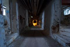 utility tunnels (Mycophagia) Tags: inthetunnel