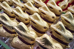 Lindt_-9835-Edit.jpg (gamachephoto) Tags: bunnies colors easter shapes forms chocolat lindtstore