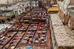 Tanneurs in Fes 2 (Alessandro Vecchi) Tags: africa leather morocco fez marocco maghreb medina viaggio fes cuoio tanneurs conciatori nordafrica