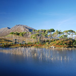 "Derryclare Lake and Pine Island <a style=""margin-left:10px; font-size:0.8em;"" href=""http://www.flickr.com/photos/89335711@N00/8596693486/"" target=""_blank"">@flickr</a>"