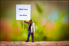 What have we done (Pikebubbles) Tags: miniatures miniature miniatureart figurines littlepeople figurine itsasmallworld smallworld thelittlepeople davidgilliver davidgilliverphotography brexit