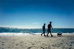 Morning Stroll (Ailís Ní hÉgeartaigh) Tags: life blue ireland light sea people sun seascape beach dogs beautiful zeiss europe sony scenic sunny bluesky shore za wexford a7 2016