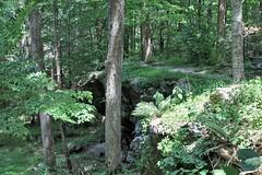 Cunningham Falls SP ~ HTMT! (karma (Karen)) Tags: cunninghamfallssp thurmont maryland frederickco mdstateparks woods forests trees paths trails 4summer cmwd