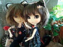 Cat brothers (Lunalila1) Tags: doll groove junplaning handmade outfit cat neko taeyang mj mômo obitsu mal 27 ears pullip ddalgi dani danita pereira 25 blando