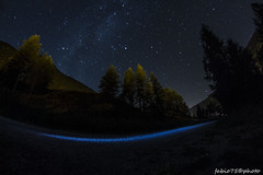 230#365 La Notte Blu (Fabio75Photo) Tags: notte blu stelle lattea strada luci alberi bosco conifere abeti montagna lillaz cogne aosta paradiso paradise cielo sky