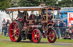 IMGL5427_Lincolnshire Steam & Vintage Rally 2016 (GRAHAM CHRIMES) Tags: lincolnshiresteamvintagerally2016 lincolnshiresteamrally2016 lincolnshiresteam lincolnshiresteamrally lincolnrally lincolnshire lincoln steam steamrally steamfair showground steamengine show steamenginerally traction transport tractionengine tractionenginerally heritage historic photography photos preservation photo vintage vehicle vehicles vintagevehiclerally vintageshow classic wwwheritagephotoscouk lincolnsteam lincolnsteamrally arena mainarena mainring parade burrell showmans tractor yorkshireman 3313 1911 ah6813