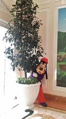 dlh- goofy (alienalice) Tags: hkdl hkdisneyland duffy gelatoni tinkerbell mickey minnie donald daisy woody jessie